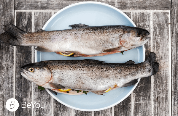 The benefits of eating fish